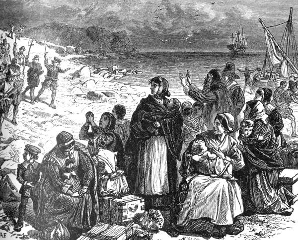 the history of the puritans in new england Our puritan forefathers  official suppression of christmas was foundational to the godly colonies in new england  rachel n schnepper is a junior faculty fellow in history at washington.
