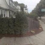 Fuller Terrace (Street)